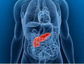 RESEARCHERS USE MRI TO VISUALIZE CHANGES IN PANCREAS IN EARLY STAGE DIABETES - Bimedis - 1